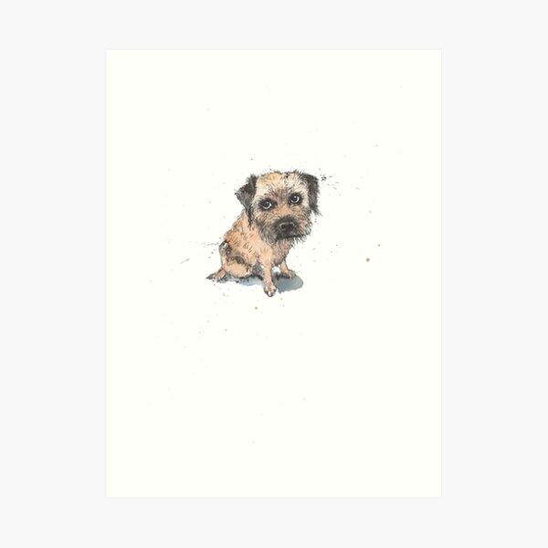 Sheepish Border Terrier Art Print