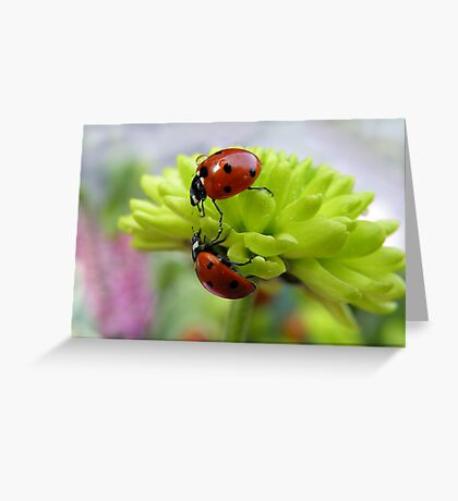 If you need a helping hand.... Greeting Card