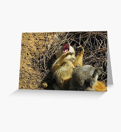 Sunbathing is so  hard-Meerkat Yawn Greeting Card