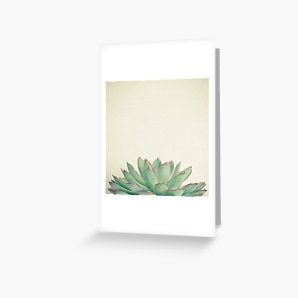Echeveria Greeting Card