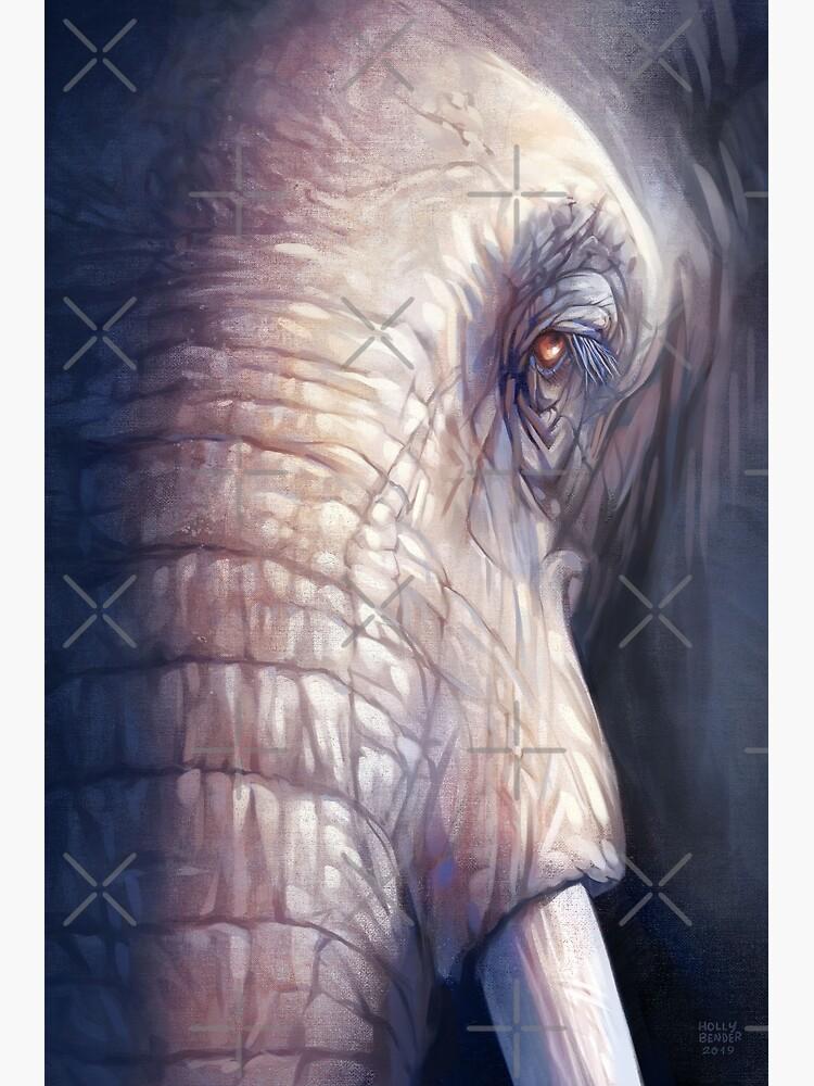 Elephant by hollybender
