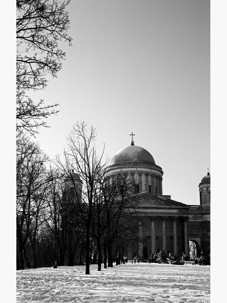 Basilica, Esztergom Hungary by rodneyj46