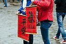 Vietnam: Vibrant Symbols by Kasia-D