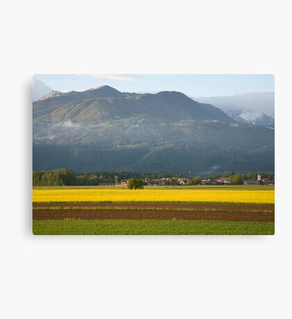 rapeseed field in Brnik with Kamnik Alps and Krvavec ski resort in the background, Slovenia. Canvas Print