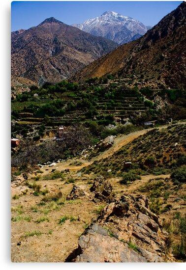 Berber Village by Adam Costello