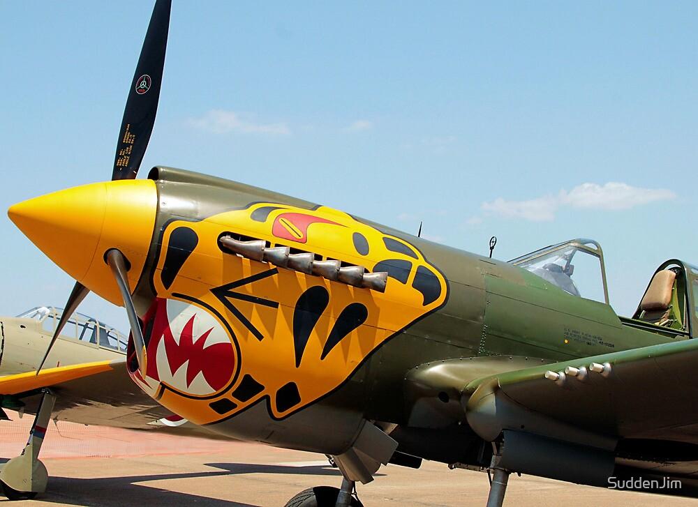 Curtiss P-40 Warhawk, WWI by SuddenJim