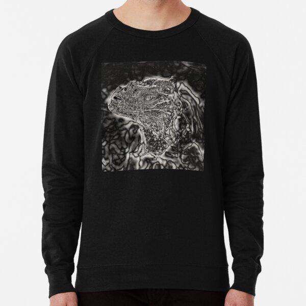 Spectral Darkness 3 Lightweight Sweatshirt