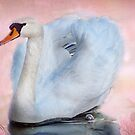 The Graceful Swan  by Irene  Burdell