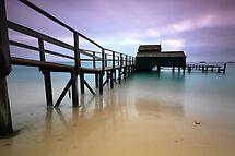 The Shelly Beach... Exposed by Sean Farrow