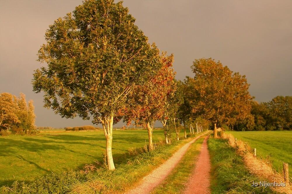 Country Road by Jo Nijenhuis
