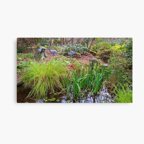Hidden Storks in Bellevue Botanical Garden (Washington State) Canvas Print