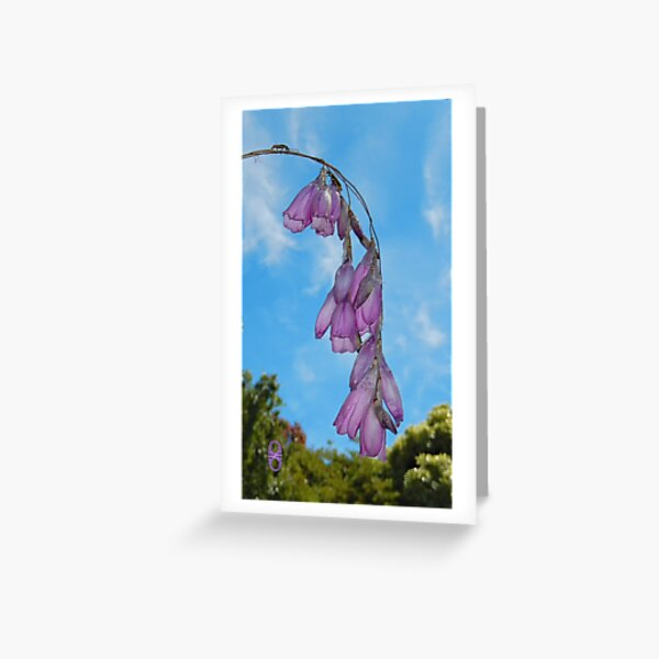 Summertime by tasmanianartist Greeting Card