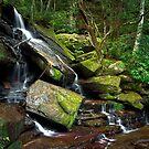 Somersby Falls - Lower Falls by Mathew Courtney