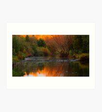 Autumn Weir Art Print