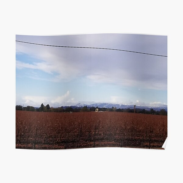 The Vineyards in Fall Poster