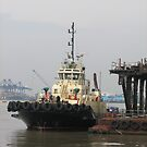 Tug at  Felixstowe Docks by RKLazenby