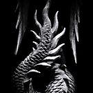 ...dragon... by Geoffrey Dunn