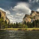 Yosemite Spring by Leasha Hooker