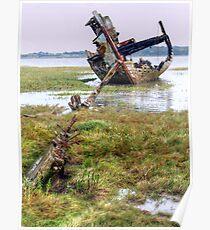 Clarain FD119 - Fleetwood Marsh Poster