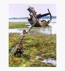 Clarain FD119 - Fleetwood Marsh Photographic Print