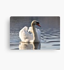 Lakedistrict Afternoons Canvas Print