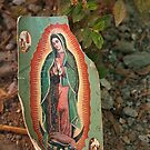 Virgen de Guadalupe by Richard G Witham