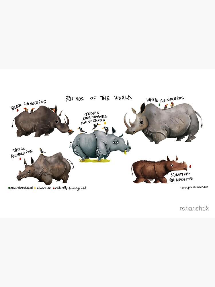 Rhinos of the World by rohanchak