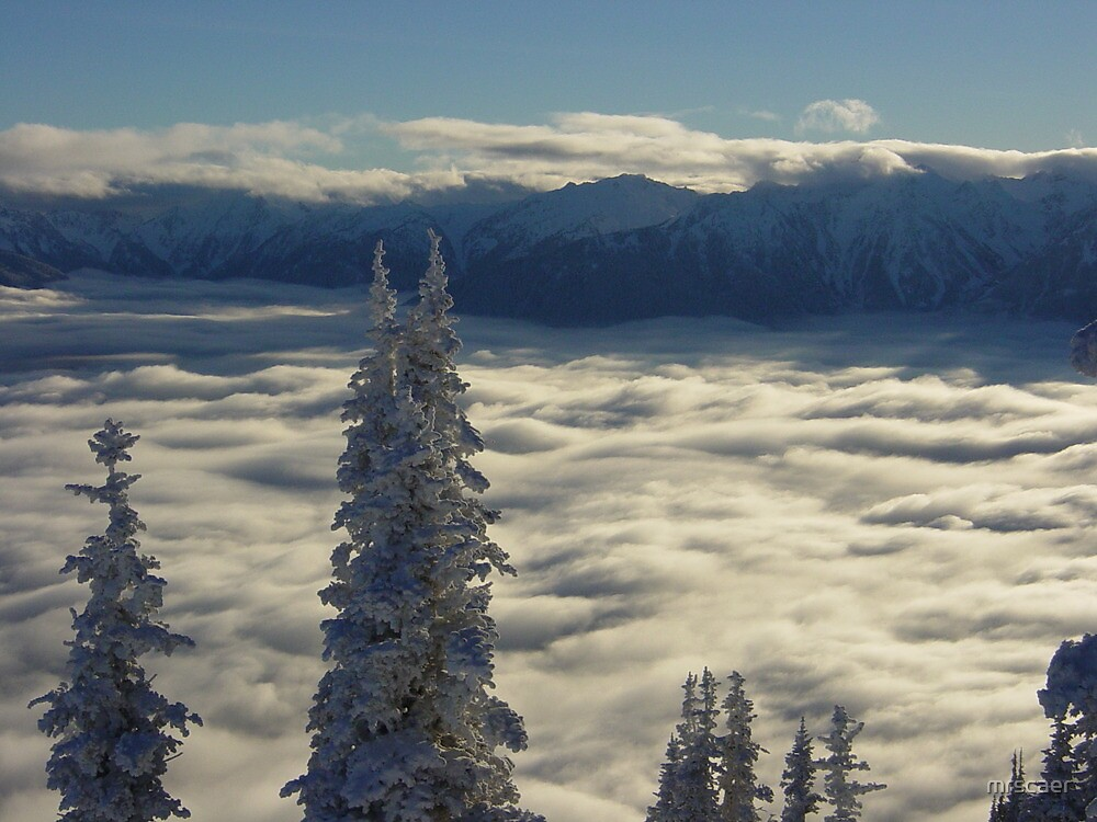 Winter Clouds at Hurricane Ridge by mrscaer