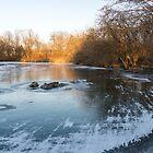 «Texturas en capas y luz - Frozen Pond Sunrise» de Georgia Mizuleva