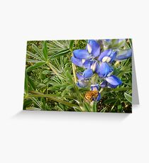 Bee On A Blue Flower Greeting Card