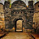 Hwaseong Fortress Gate by Barbara  Brown