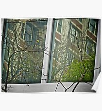 Reflections Behind The Branches - Portland - Oregon Poster