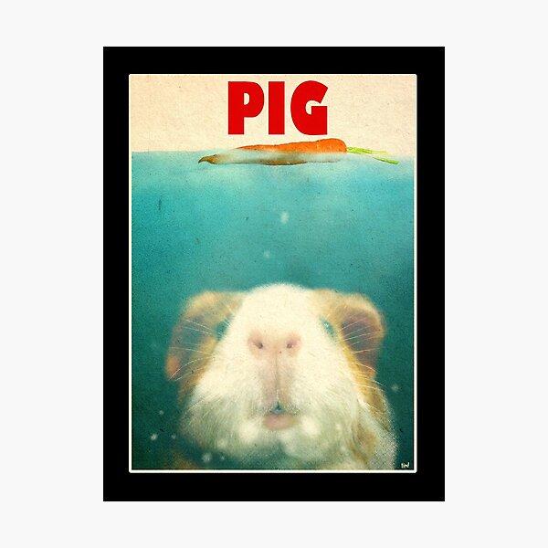 Little Sea Pig Photographic Print