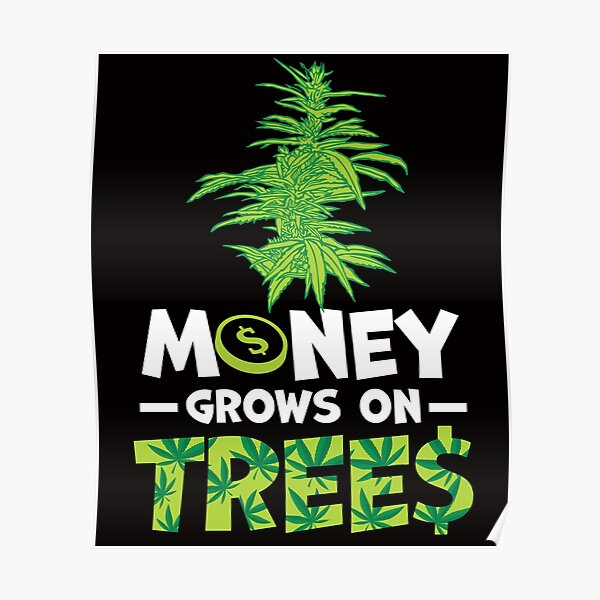 Savvy Turtle Money Grows On Trees Poster