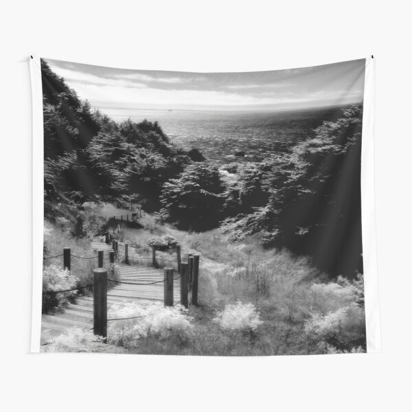 Land's End - San Francisco  Tapestry