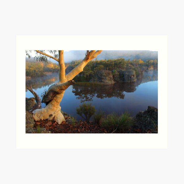 Dunns Swamp Art Print