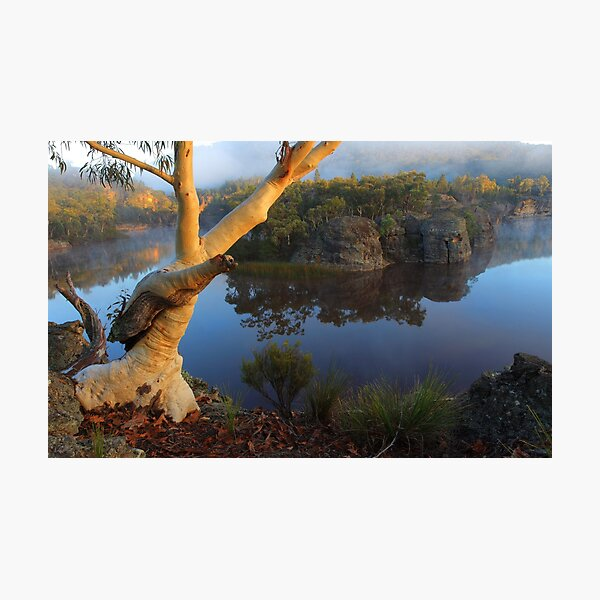Dunns Swamp Photographic Print