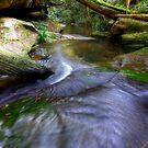 Downstream Waitui #2 by craigmason