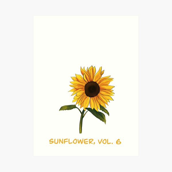 Sunflower, Vol. 6 Art Print