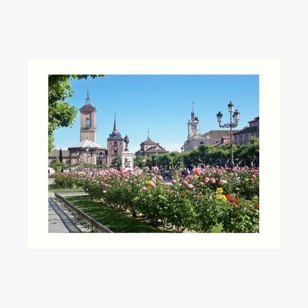 Alcalá de Henares Lámina artística