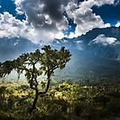 Mt Meru by Neville Jones