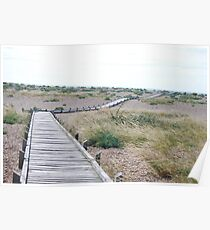 Rickety Wooden Path Poster