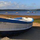 Fisherman's boat  by Peter Voerman
