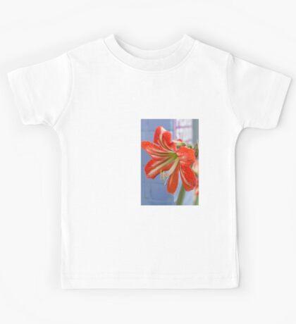Tania's Happy Hippy plants - Hippeastrum Kids Clothes