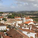 Obidos - Portugal  by Peter Voerman