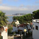 View from Quinta de Boavista by Peter Voerman