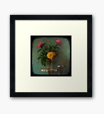 Peonies & Roses - Still Life TTV Framed Print