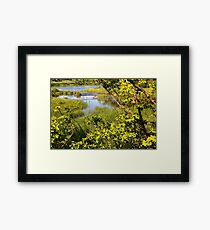 Lots of Green Framed Print