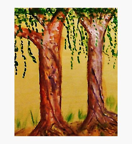 Old Trees with Character, watercolor Photographic Print