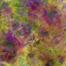 Floral Abstract ~  by Debbie Robbins